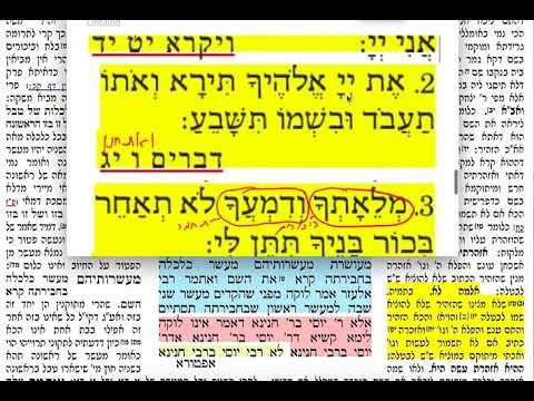 הדף היומי מסכת תמורה Daf yomi Temurah daf 4