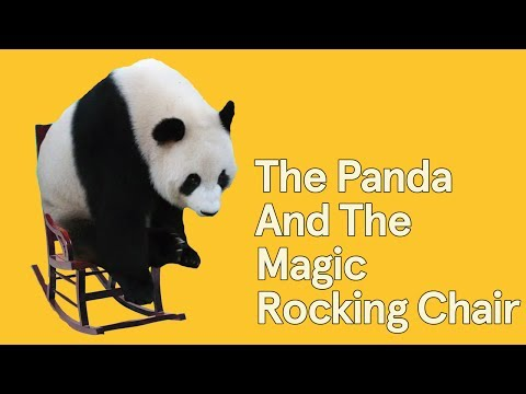 "Panda In A Rocking Chair | From The Album ""Animals"" 