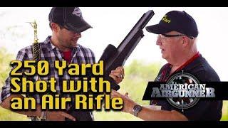 250 Yard Shot with an Air Rifle : Airgunner