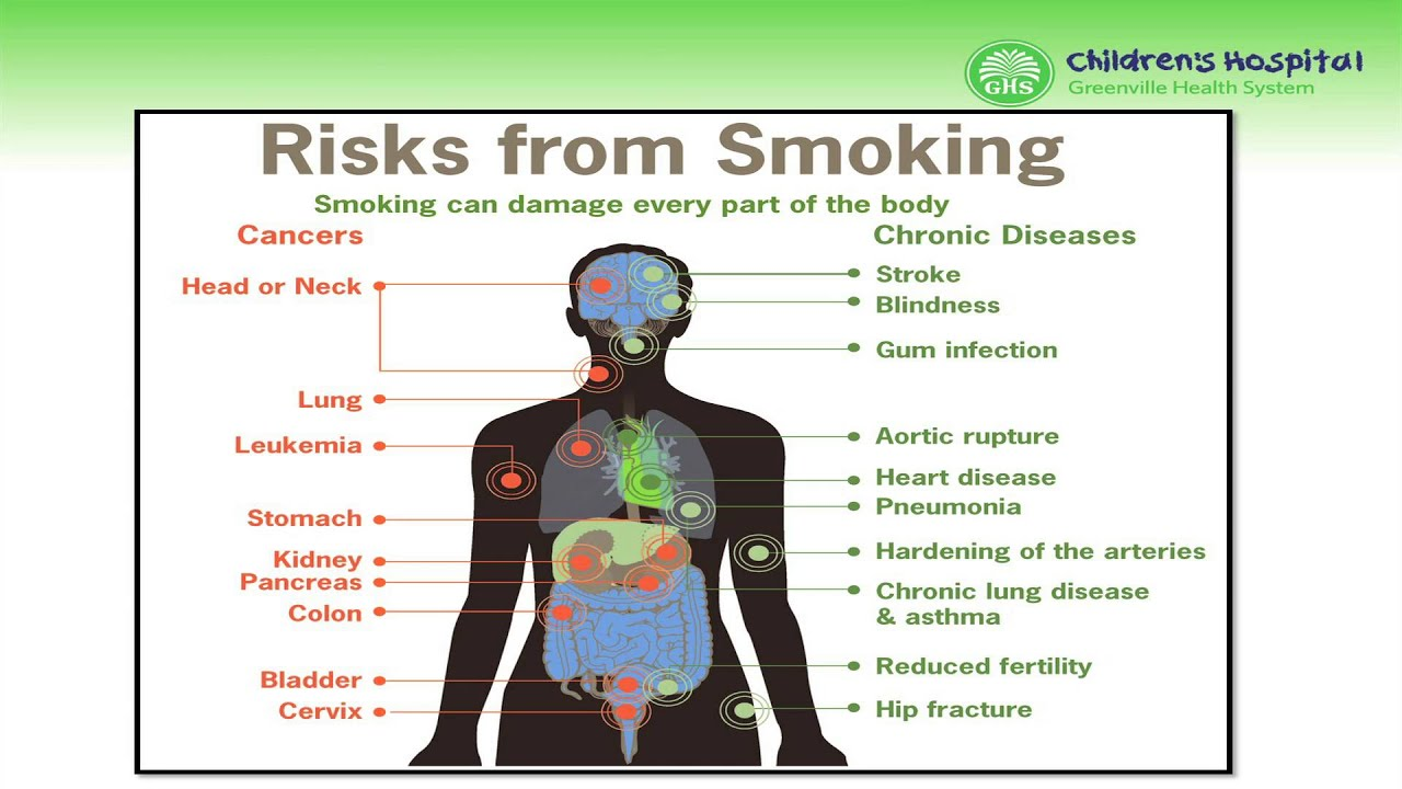 smoking and its effects pdf