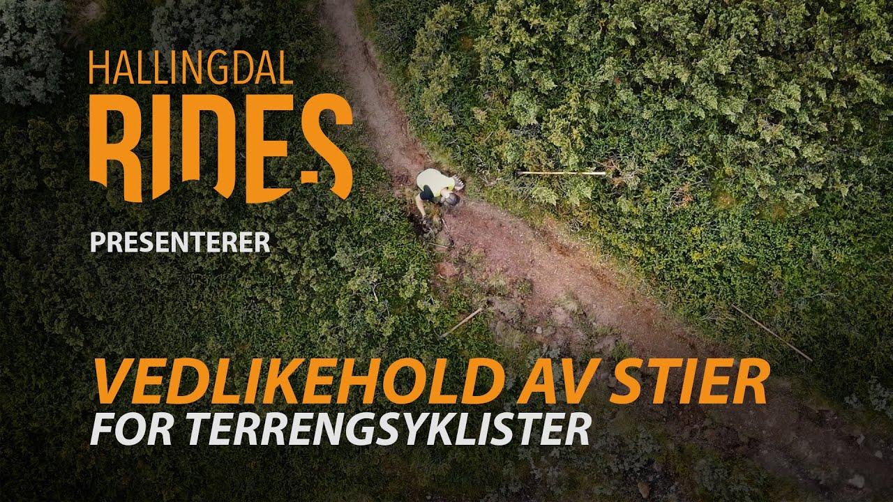 Tips til vedlikehold av stier for terrengsyklister - Hallingdal Rides