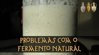 Problemas Com Seu Fermento Natural?