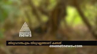 Dead Body of unknown woman found near Thiruvallam Thiruvananthapuram