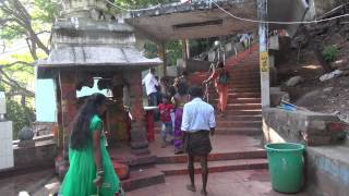 tirumala tirupati foot path திருப்பதி