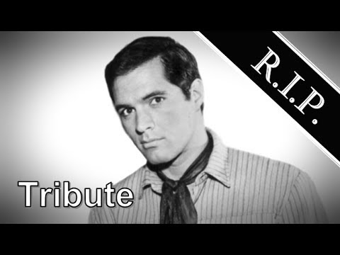John Gavin ● A Simple Tribute