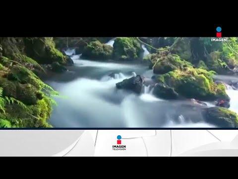La Reserva de la Biósfera Montes Azules en Chiapas es reconocida por la Unesco | Noticias con Franc
