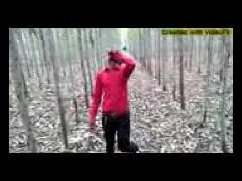 पंकज  राज प्रजापति कि वीड़ीवो  आप लोग देखे  भोजपूरी की दमदार गीत thumbnail