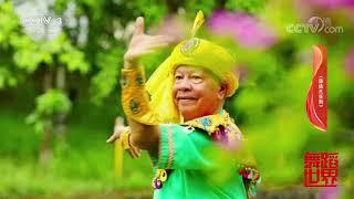 [舞蹈世界]傣族传统民间舞蹈《傣族孔雀舞》 表演:旺腊| CCTV综艺 - YouTube