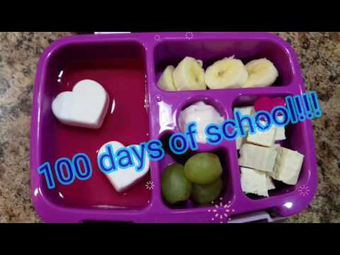 Week 22 - What She Ate - School Lunches - Bento box style
