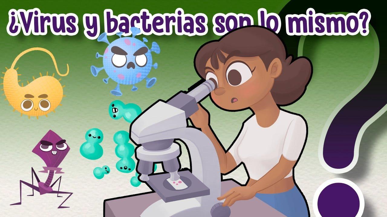 Download ¿Cuál es la diferencia entre virus y bacterias? - CuriosaMente 226
