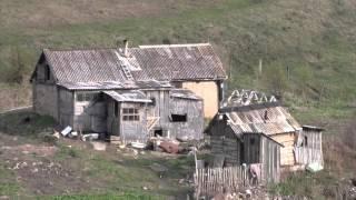 Сельское хозяйство в Алтайском крае