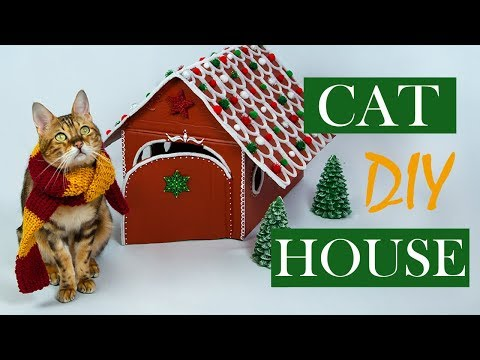How to create a gingerbread cat house for christmas ☃️ DIY | Amely Rose & Catwalk