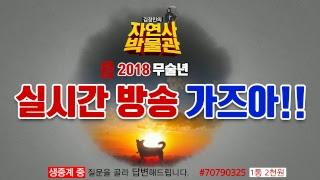 [김정민의자연사박물관]생방 가즈아!-모사드,림종석 스카웃 계획(?) 1부