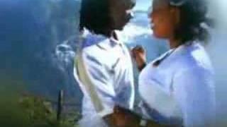 pax afro - tango pal