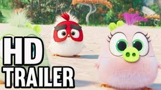 THE ANGRY BIRDS Trailer 2 (2019) Hatching Eggs   Movie coming soon