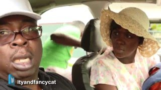Ity And Fancy Cat show: TAXED TAXI