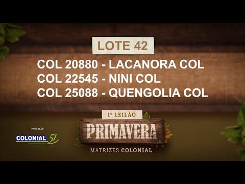 LOTE 42   COL 20880,22545,25088