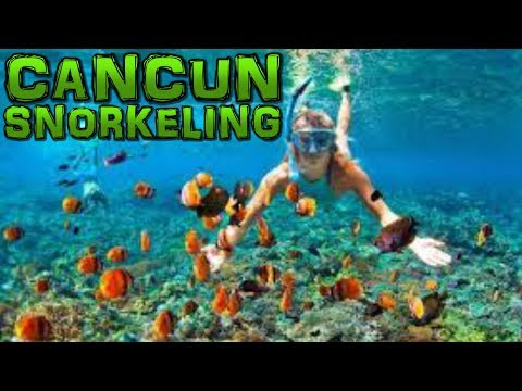 snorkeling-cancun-mexico-4k