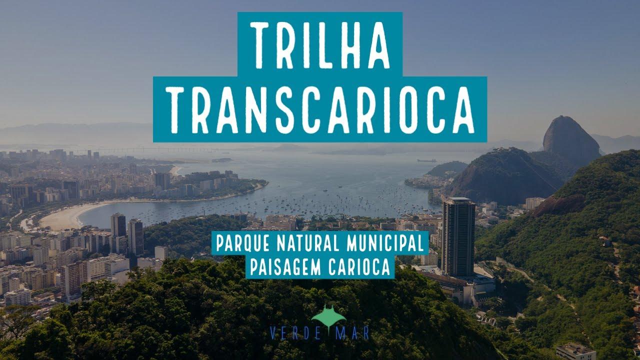 Um dia no Parque Natural Municipal Paisagem Carioca