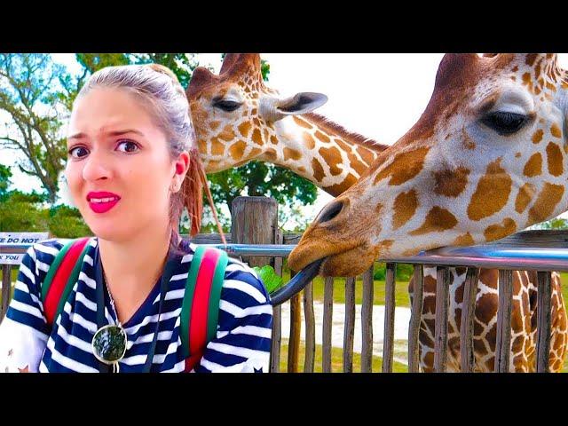 ANDIAMO ALLO ZOO A VEDERE GLI ANIMALI!!