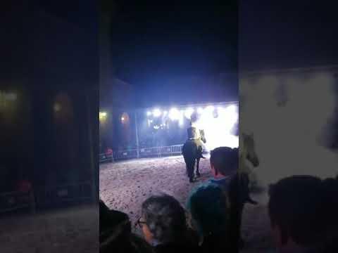 Espectáculo de doma nocturna en Mondoñedo
