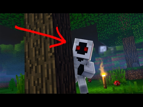 HOW IS THAT POSSIBLE? - DON'T PLAY MINECRAFT AFTER 3:00 A.M.!  ENTITY 303? (Minecraft Roleplay)