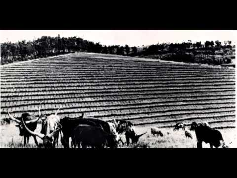 Icyifuzo (+lyrics) - Sipiriyani Rugamba & Amasimbi n'Amakombe, 1984 - Rwanda