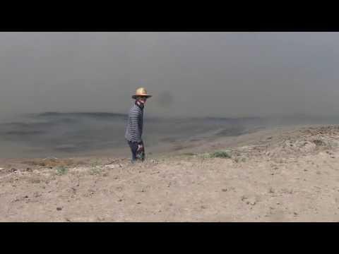 Neftaçalada - Şaqay - Balıq ovu
