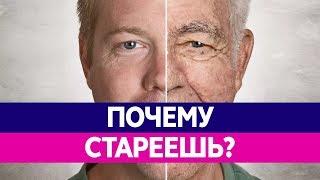 Почем МЫ СТАРЕЕМ? Старение организма, причина старения.