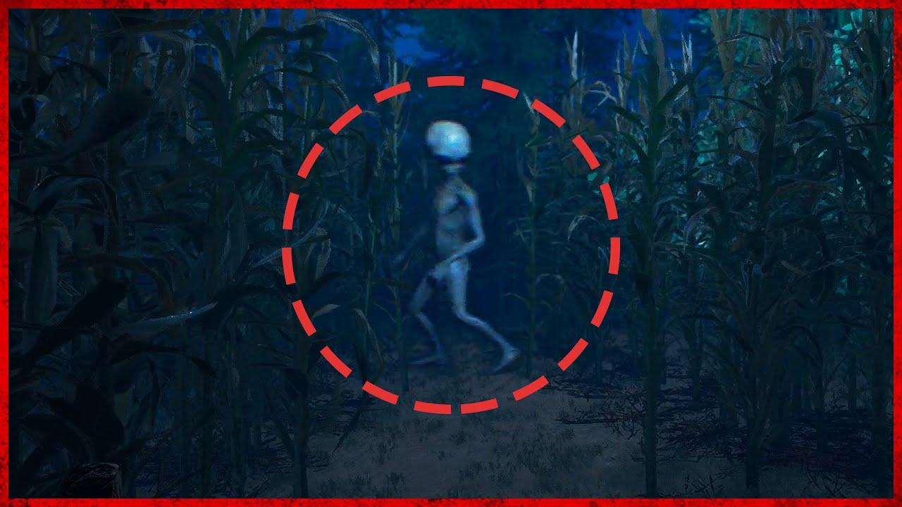 농장에 외계인이 나타났다? (신작 공포게임)