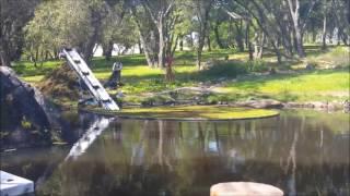 Pond cleaning Granite Bay CA