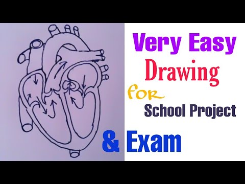 how-to-draw-human-#heart_diagram-easily-|-cbse-mp-hs-|-school-project