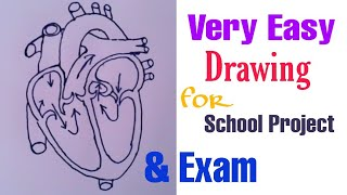How to draw human heart easily | CBSE MP HS | School project