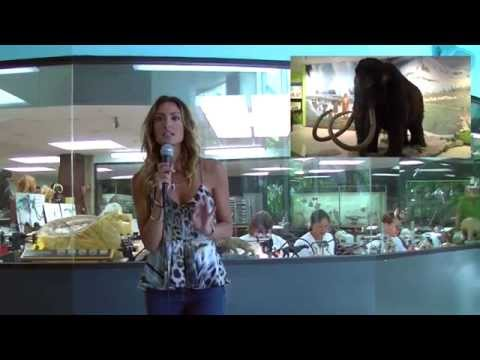 WAN's Katie Cleary Discusses Extinction At La Brea Tar Pits