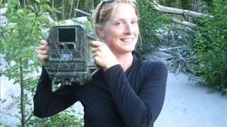 Wildlife caught on camera: 2010 remote camera results | Citizen Wildlife Monitoring Program