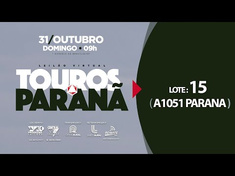 LOTE 15