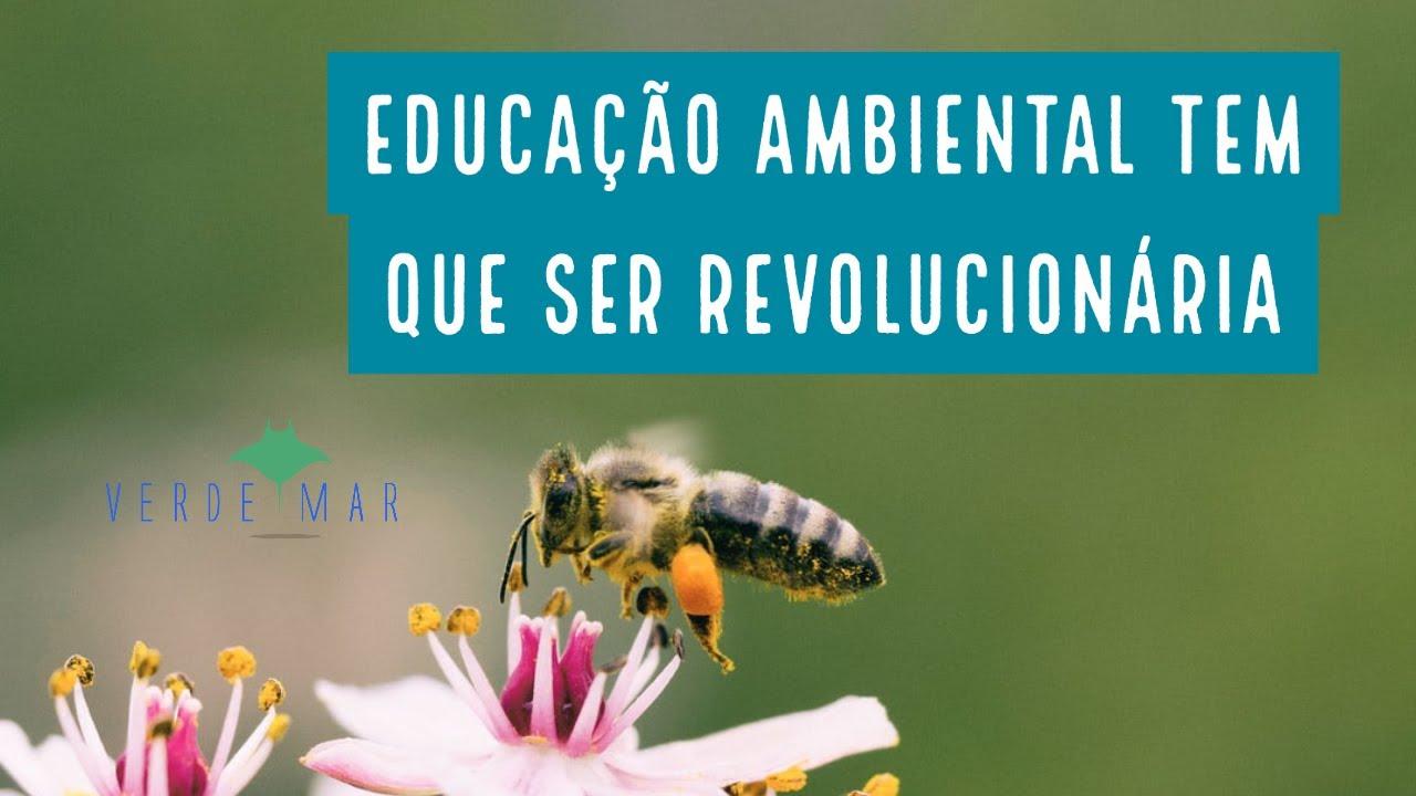 """""""Educação ambiental tem que ser revolucionária"""""""