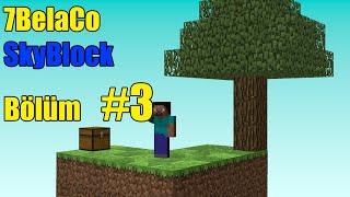 Minecraft SkyBlock Bölüm 3 Ortalık İyice Dağıldı