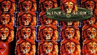 WMS - King of Africa Slot Bonus Feature 400x win - Harrah