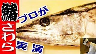 中トロ並の味「寒鰆」さわらのさばき方(Spanish mackerel)三枚おろし【刺身編】