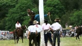 FOLKLORE - LOS FRONTERIZOS - LOS DE SALTA - LOS QUILLA HUASI -LOS VISCONTI ETC