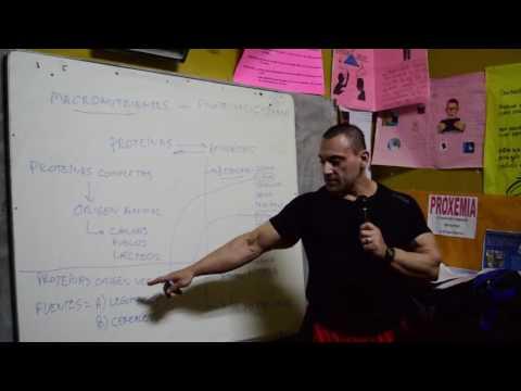 Diplomado en Culturismo y Fitness por Alberto Calabrese