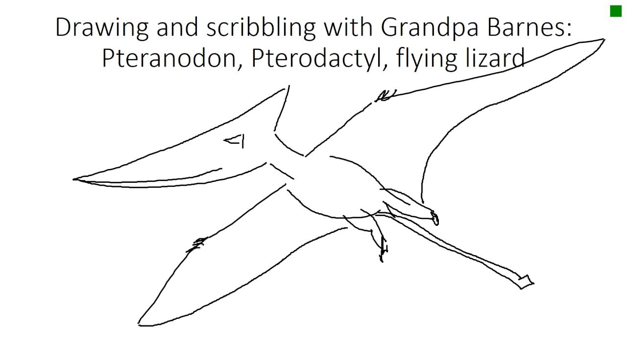 drawing and scribbling with grandpa barnes pteranodon pterodactyl