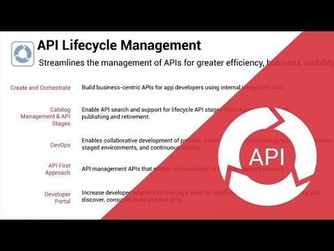 Zoom on API Lifecycle Management