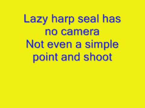 Lazy Harp Seal Has No Job  LYRICS