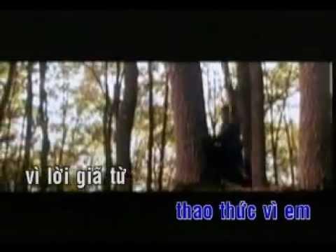 Thao thức vì em- Chế Linh- Karaoke