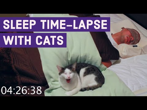 Six Hours in 90 Seconds - Time Lapse of Me Sleeping