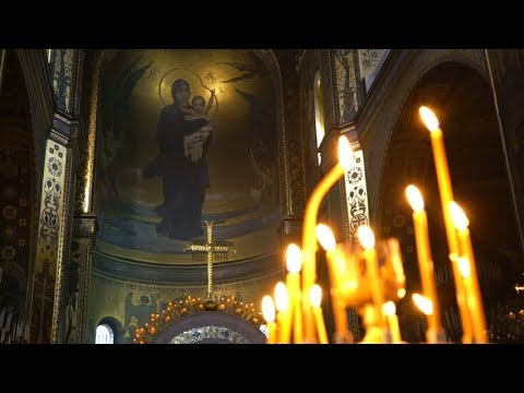 Feast  of the Immaculate Conception: The New Eve