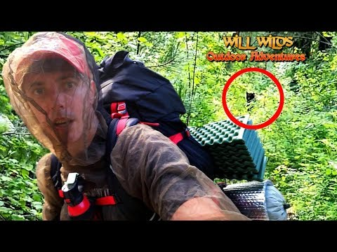 Black Bear Encounter While Hiking Alone ( Solo Backpacking Overnight Fail)