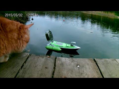 где клюет рыба в пермском крае зимой